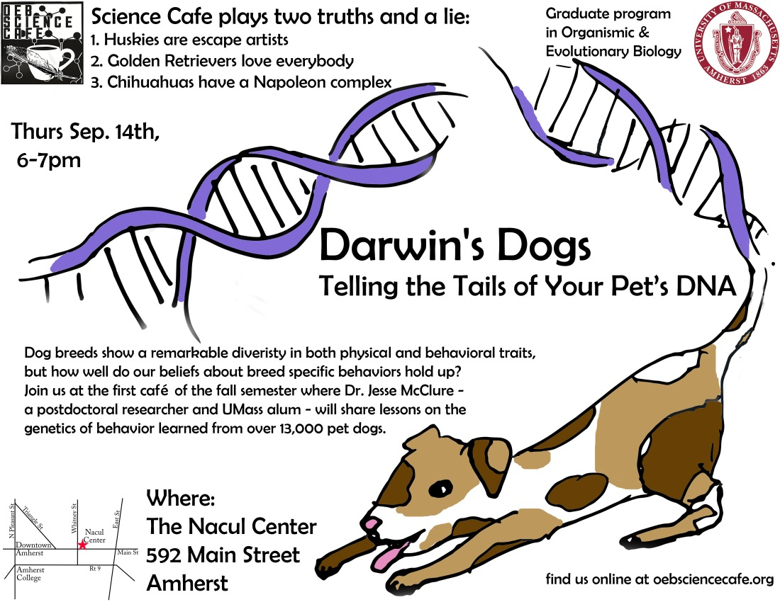 darwin dog fixed.jpg