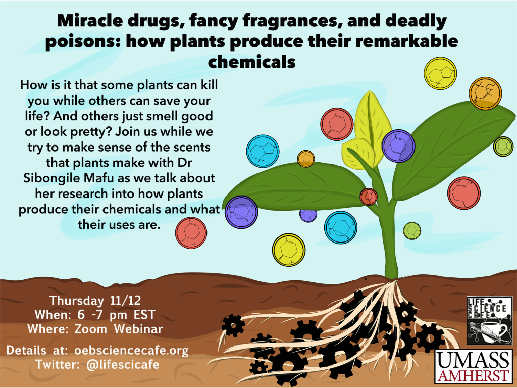 Miracle drugs, fancy fragrances, and deadly poisons: how plants produce their remarkable chemicals How is it that some plants can kill you while others can save your life? And others just smell good or look pretty? Join us while we try to make sense of the scents that plants make with Dr. Sibongile Mafu as we talk about her research into how plants produce their chemicals and what their uses are. Thursday 11/12 When: 6-7 pm EST Where: Zoom webinar Details at: oebsciencecafe.org Twitter: @lifescicafe