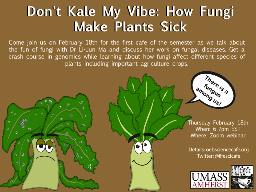 Don't kale my vibe: how fungi make plants sick Come join us on February 18th for the first cafe of the semester as we talk about the fun of fungi with Dr. Li-Jun Ma and discuss her work on fungal diseases. Get a crash course in genomics while learning about how fungi affect different species of plants, including important agriculture crops.  Thursday Feb 18th When: 6-7pm EST Where: zoom webinar